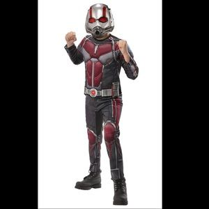Endgame Ant Man Costume